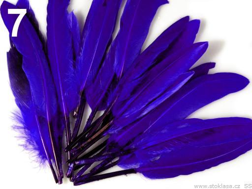 Kachní peří tmavě modré 9-14 cm