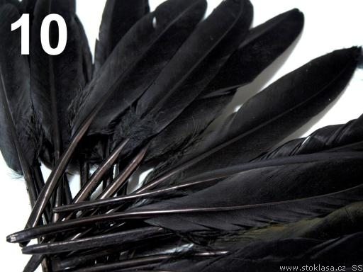 Kachní peří černé 9-14 cm