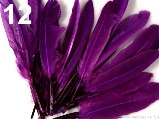 Kachní peří fialové 9-14 cm