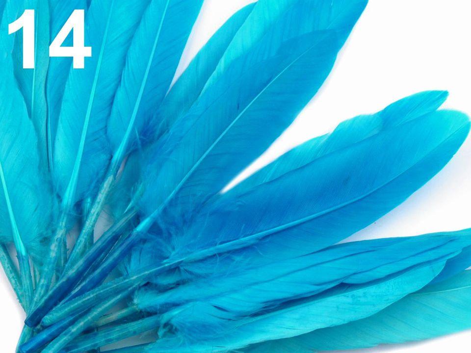 Kachní peří tyrkysové 9-14 cm