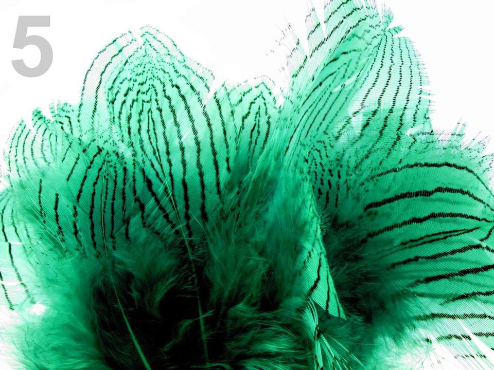 Bažantí peří zelené 4-12 cm