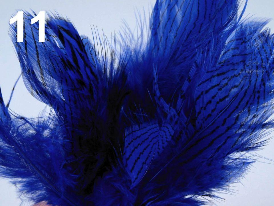 Bažantí peří tmavě modré 4-12 cm