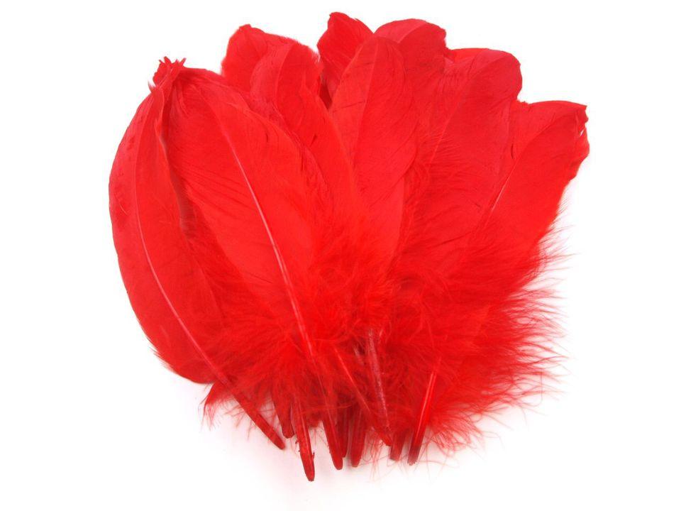 Husí peří červené 16-21 cm