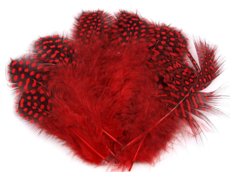 Ozdobné slepičí peří červené 5-13 cm