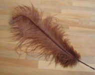Pštrosí peří hnědé 50 - 55 cm