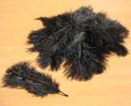 Pštrosí peří černé 5 - 12 cm ( 20 ks )