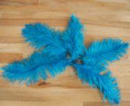 Pštrosí peří tyrkysové 20 - 25 cm