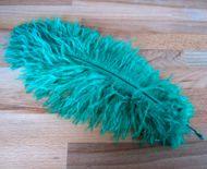 Pštrosí peří smaragdové 30 - 35 cm