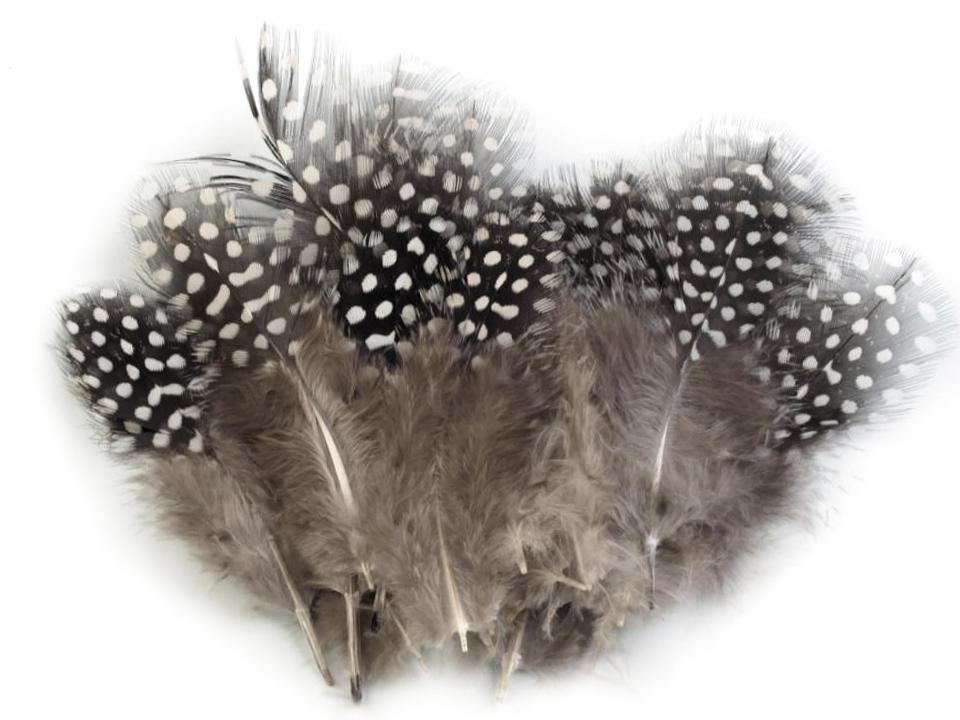 Ozdobné slepičí peří šedobéžové 5 - 13 cm