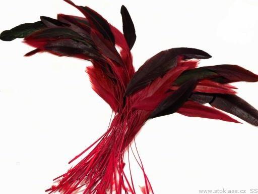 Kohoutí peří červené 13-18 cm