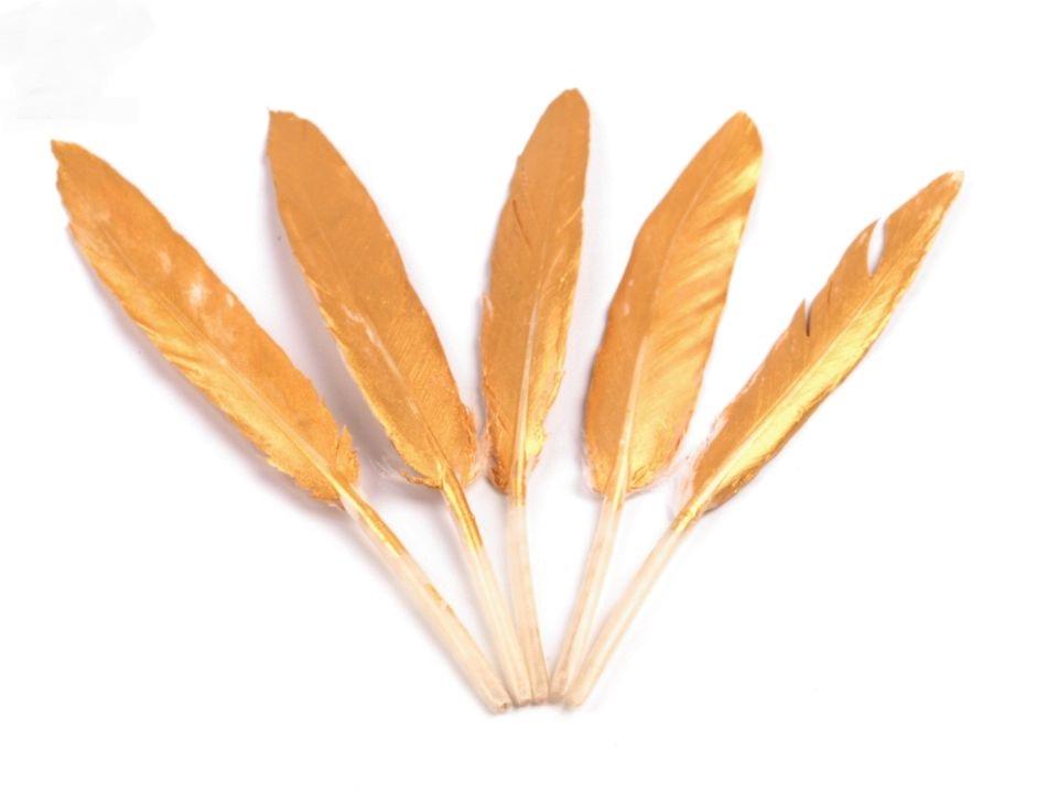Kachní peří zlaté 10 - 14 cm