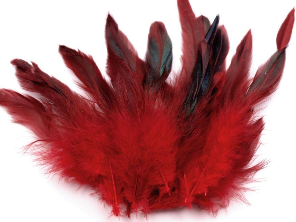 Slepičí peří tmavě červené 6 -15 cm