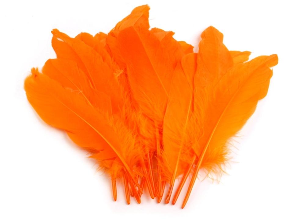 Husí peří oranžové 16 - 21 cm