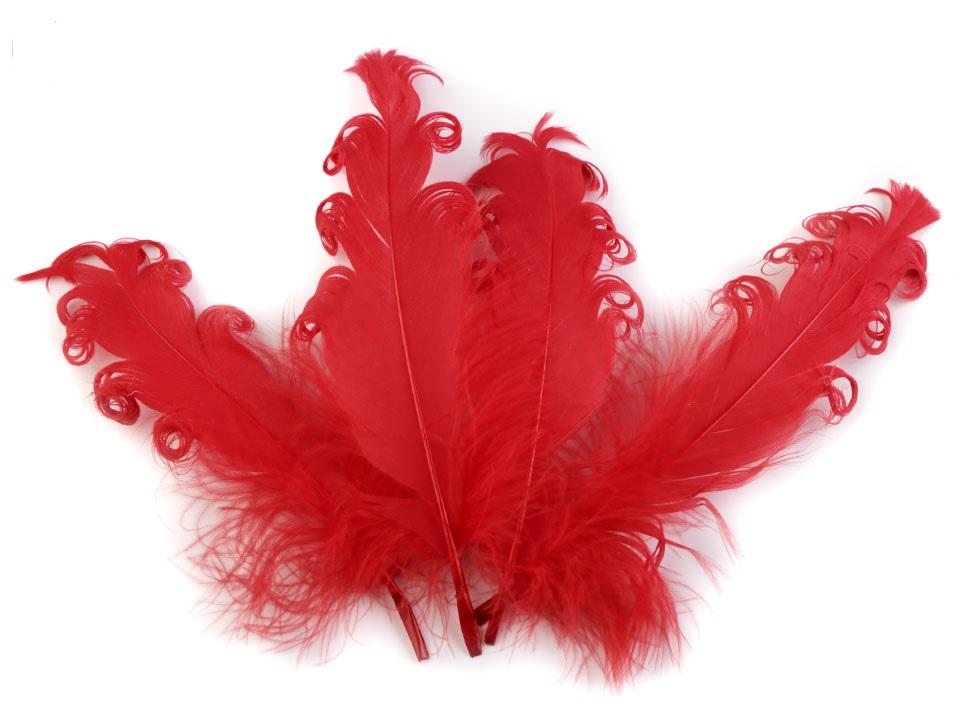 Husí peří kudrnaté červené 13 - 18 cm