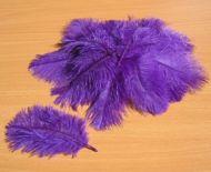 Pštrosí peří fialové 5 - 12 cm