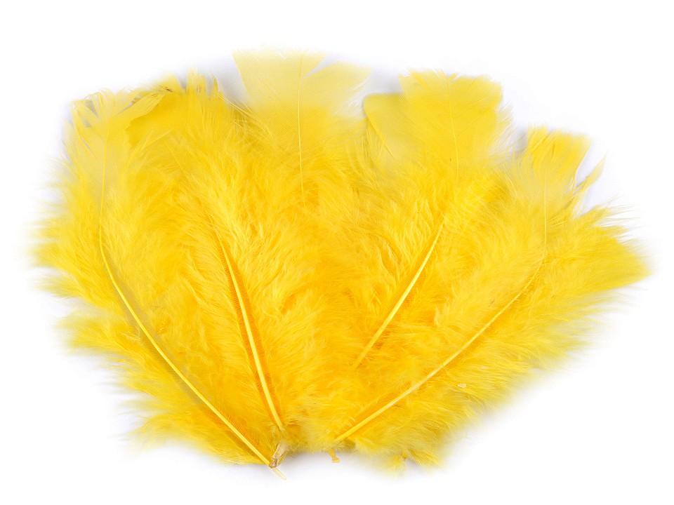 Krůtí peří žluté tmavé 11-17 cm