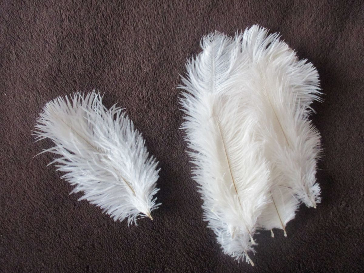 Pštrosí peří bílé 12 - 20 cm 10 ks