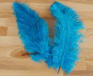 Pštrosí peří tyrkysové 25 - 30 cm