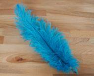 Pštrosí peří tyrkysové 30 - 35 cm