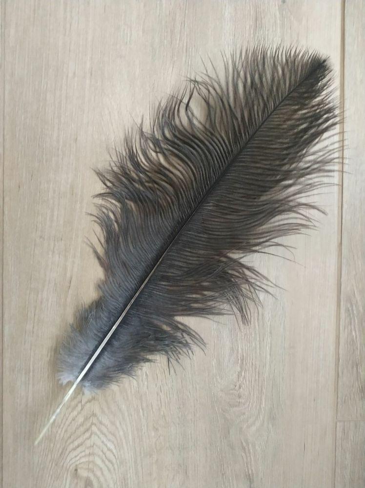 Pštrosí šedé přírodní 35 - 40 cm