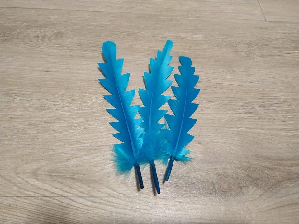 Husí peří zubaté tyrkysové 16 - 21 cm