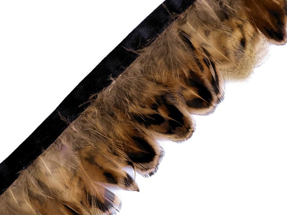 Prýmek - bažantí peří šíře 40 mm hnědá