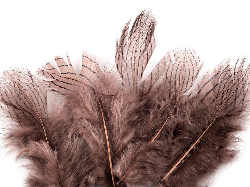 Bažantí peří starorůžové 4-12 cm