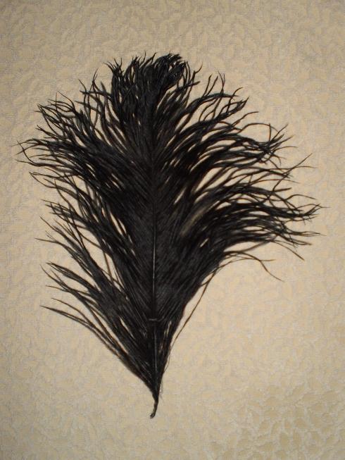Pštrosí peří černé 25 - 30 cm