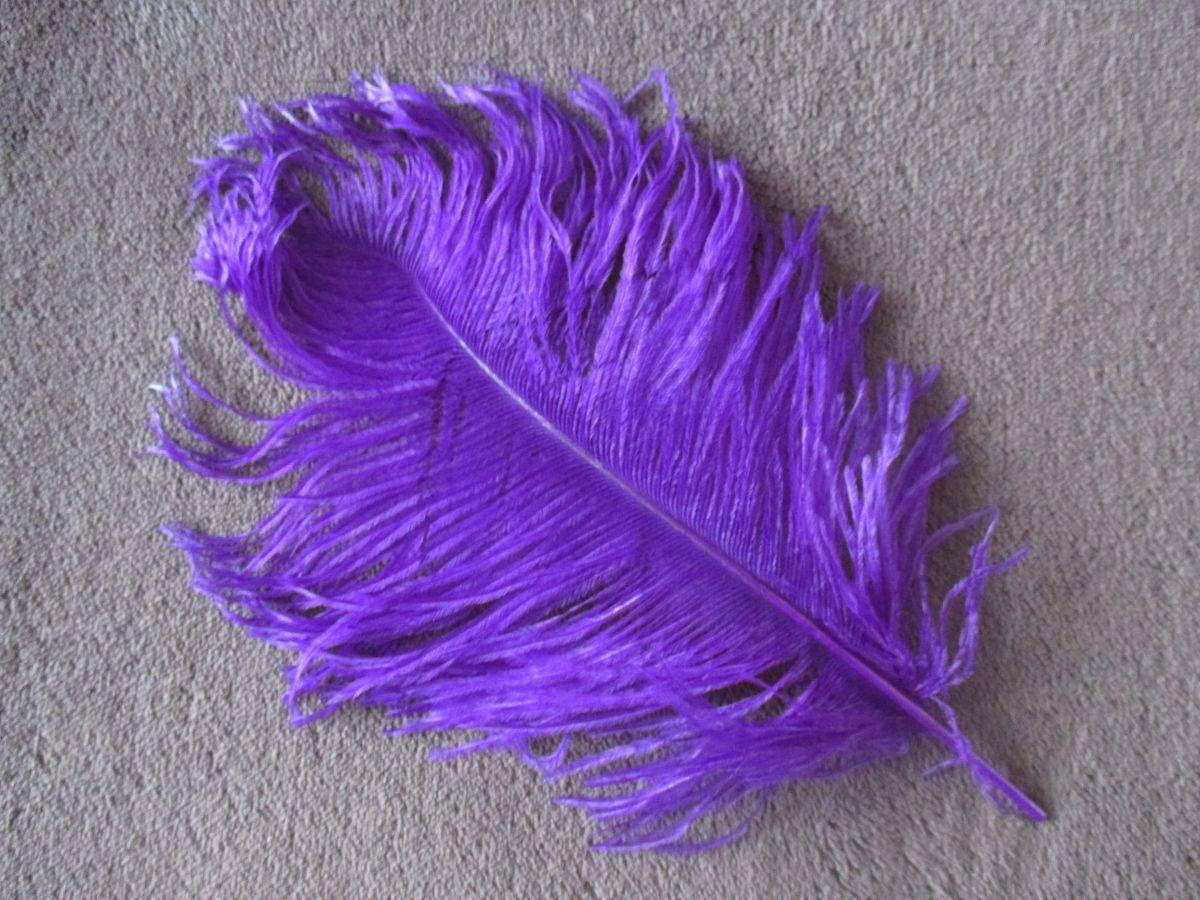 Pštrosí peří fialové 25 - 30 cm