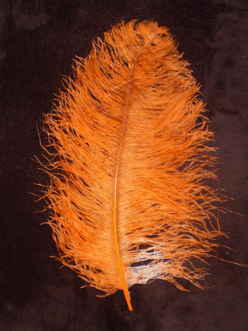 Pštrosí peří oranžové 55 - 60 cm